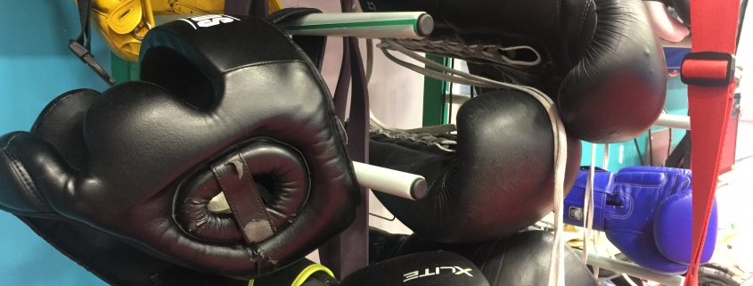 Boxing headguards